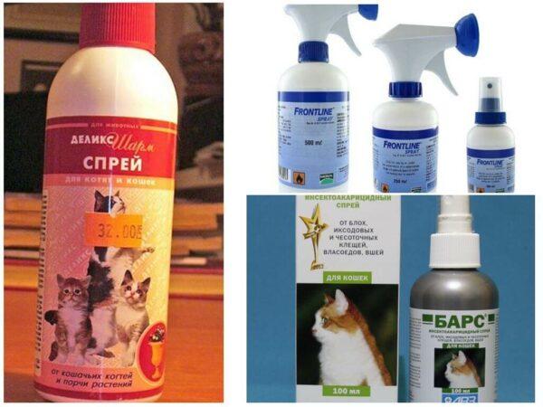 Эффективные средства от блох у кошек и котят
